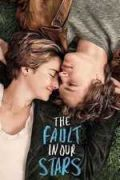 The Fault in Our Stars (2014) BluRay 720p