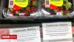Woman arrested over strawberry needle scare
