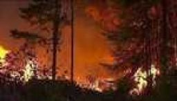 Sweden wildfires rage up to Arctic Circle