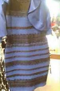 Gold and White or Blue and Black